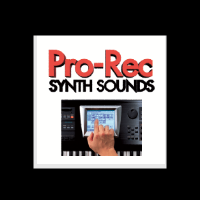 Welcome to Pro-Rec.com, #1 in synth sounds for 22 years.